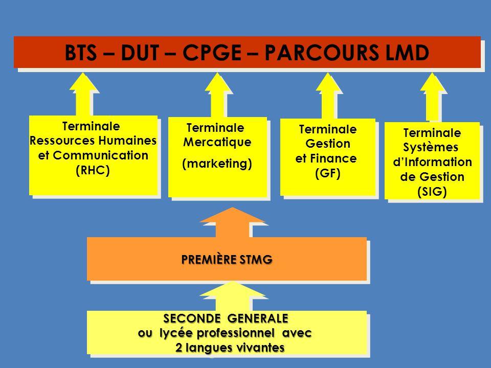 PREMIÈRE STMG Terminale Systèmes dInformation de Gestion (SIG) Terminale Systèmes dInformation de Gestion (SIG) Terminale Gestion et Finance (GF) Term