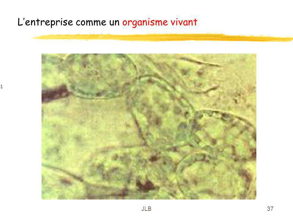 JLB37 Lentreprise comme un organisme vivant BWBW