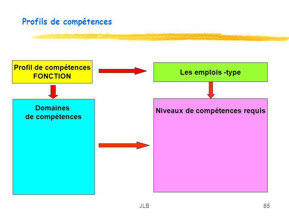 JLB85 Profils de compétences Profil de compétences FONCTION Domaines de compétences Les emplois -type Niveaux de compétences requis