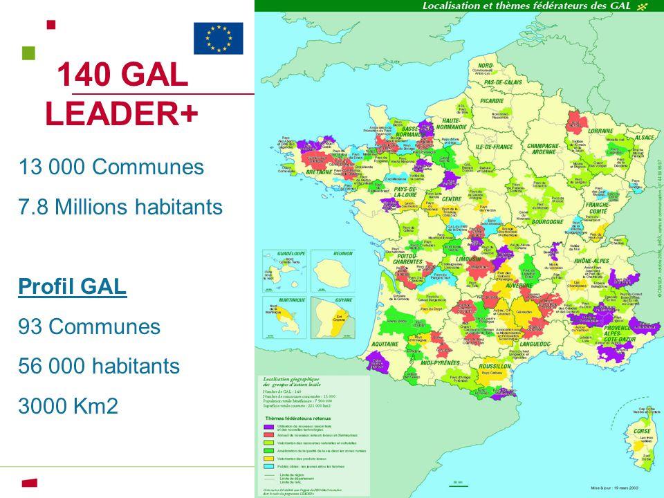 140 GAL LEADER+ 13 000 Communes 7.8 Millions habitants Profil GAL 93 Communes 56 000 habitants 3000 Km2