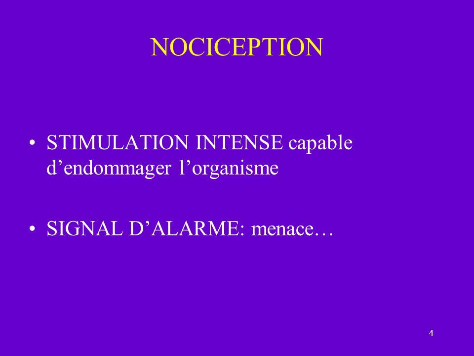 45 Lambiguité des termes SOUFFRANCE DOULEUR MORALE ou PSYCHIQUE DOULEUR TOTALE ( parler de souffrance) SOMATISATION