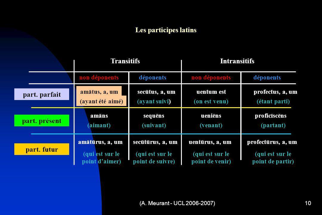 (A. Meurant - UCL 2006-2007)10 Les participes latins TransitifsIntransitifs déponentsnon déponents déponents part. parfait amātus, a, um (ayant été ai