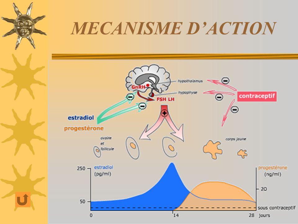 MECANISME DACTION A doses suffisantes : les O > 30 µg/j P de synthèse(norsteroides)(10mg/j) ( - ) de sécrétion de LH et FSH : cest-à-dire (–) de lovul