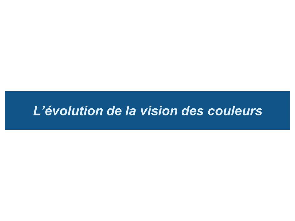 Lévolution de la vision des couleurs