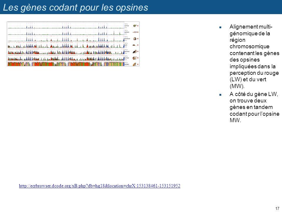 Les gènes codant pour les opsines Alignement multi- génomique de la région chromosomique contenant les gènes des opsines impliquées dans la perception