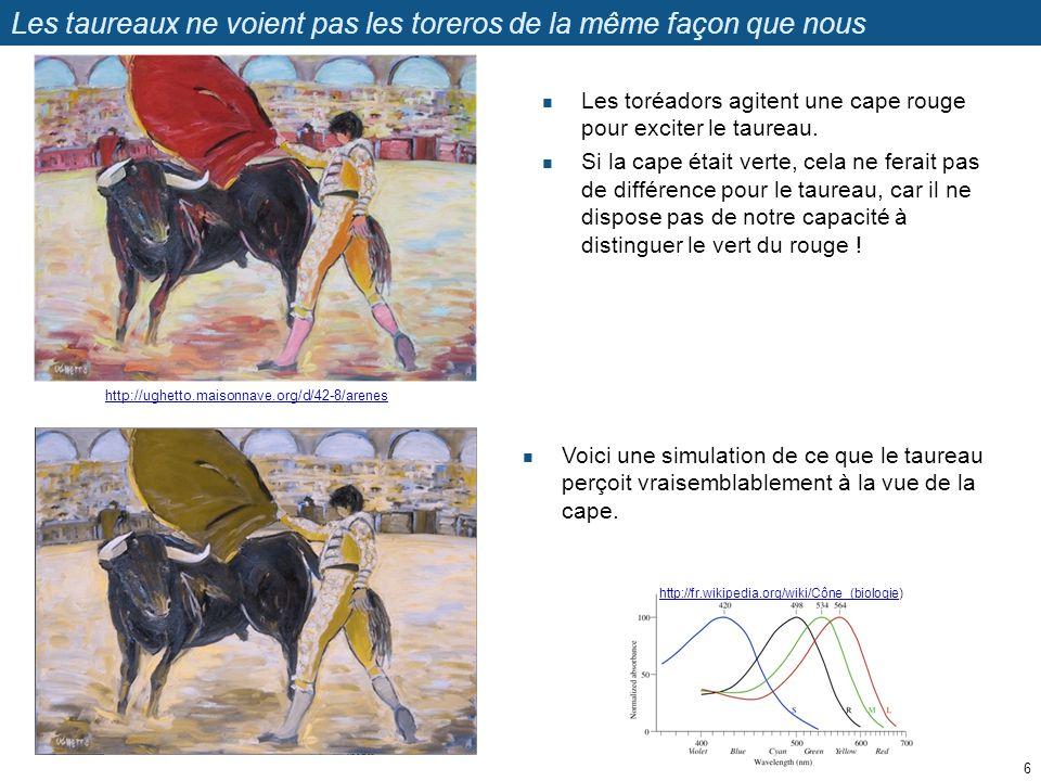 Les taureaux ne voient pas les toreros de la même façon que nous Les toréadors agitent une cape rouge pour exciter le taureau. Si la cape était verte,