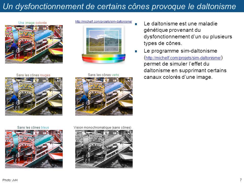 Un dysfonctionnement de certains cônes provoque le daltonisme Le daltonisme est une maladie génétique provenant du dysfonctionnement dun ou plusieurs