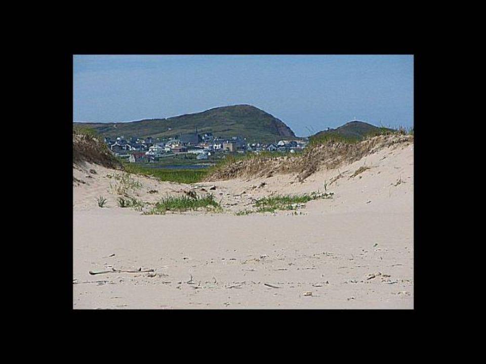 Les dunes Les îles, sévèrement attaquées par l'érosion littorale, fournissent la matière première des liens qui les unissent. De longues flèches de sa