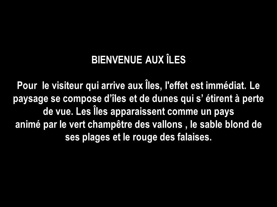 MUSIQUE `` What a wonderful world `` popularisé par Louis Armstrong du film : Good Morning Vietnam au synthétiseur