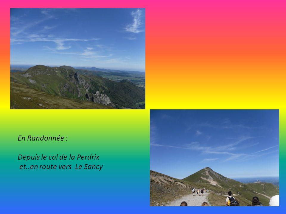 SAINT NECTAIRE Pays du Fromage avec sa magnifique église, lune des cinq majeures d Auvergne, les Fontaines Pétrifiantes possède également un Dolmen.