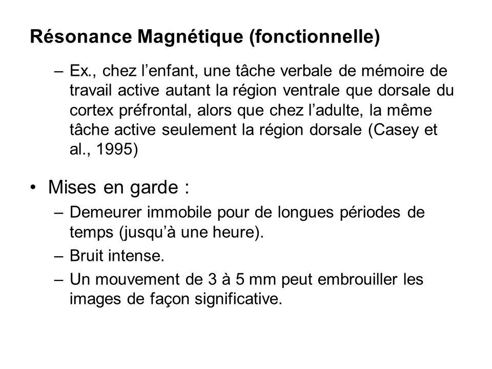 Résonance Magnétique (fonctionnelle) –Ex., chez lenfant, une tâche verbale de mémoire de travail active autant la région ventrale que dorsale du corte