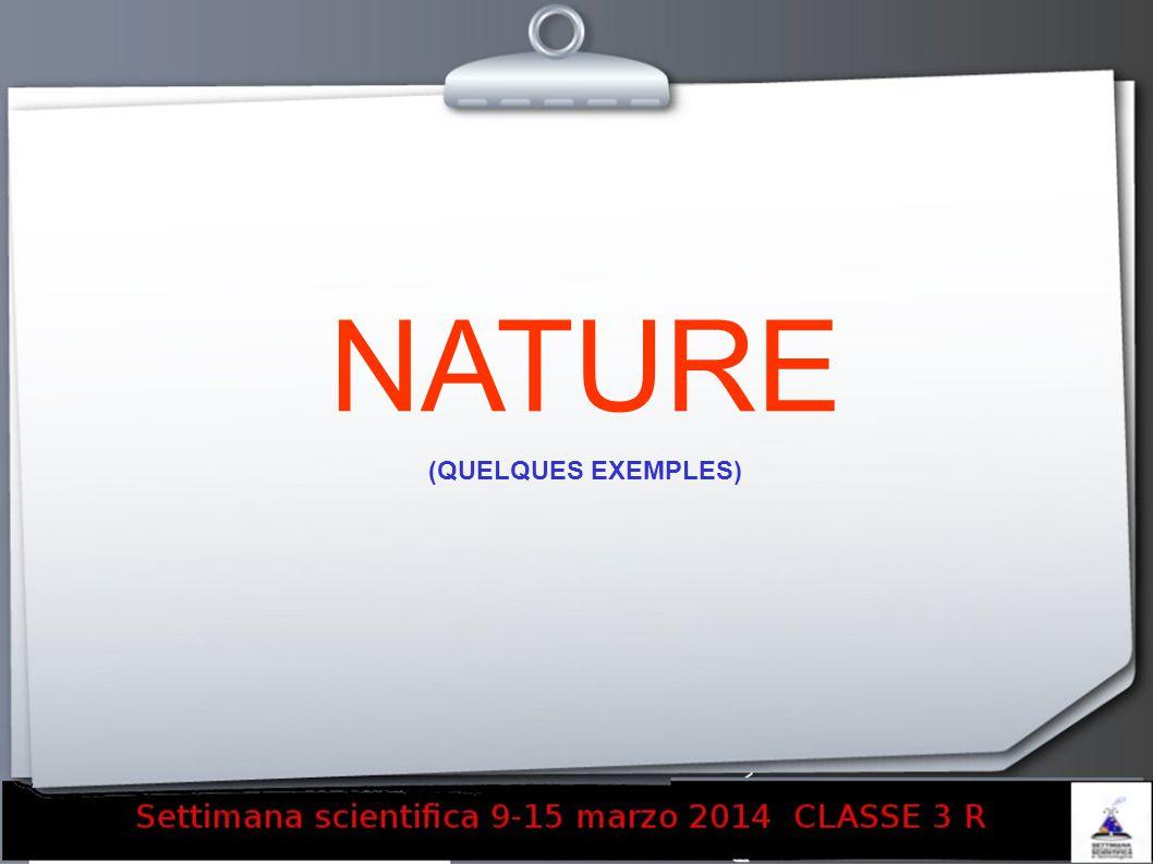 NATURE (QUELQUES EXEMPLES)