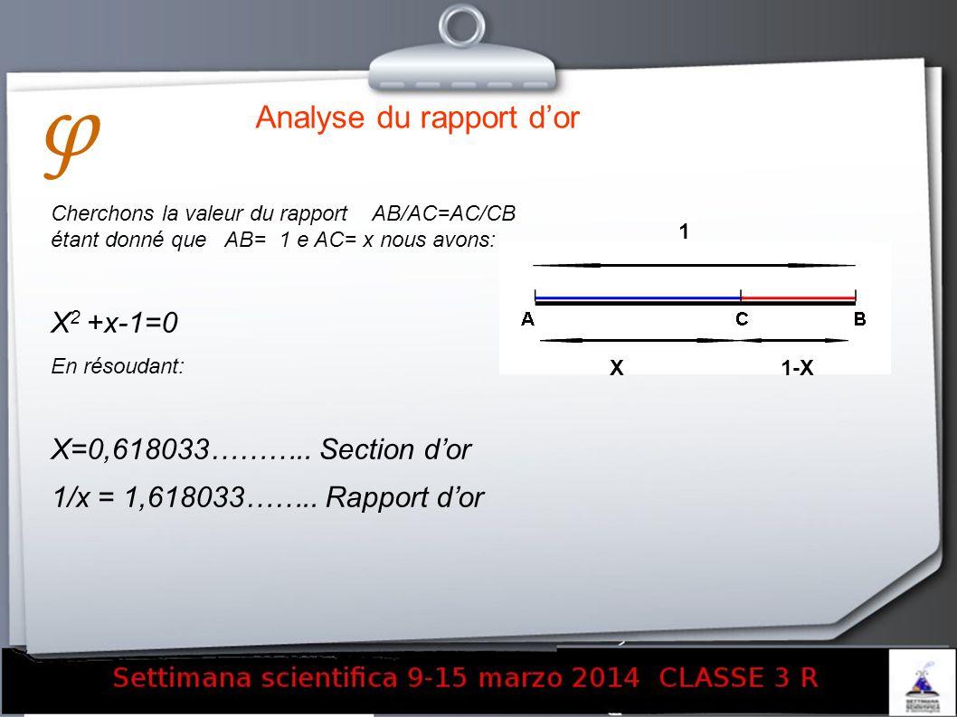 Analyse du rapport dor Cherchons la valeur du rapport AB/AC=AC/CB étant donné que AB= 1 e AC= x nous avons: X 2 +x-1=0 En résoudant: X=0,618033……….. S