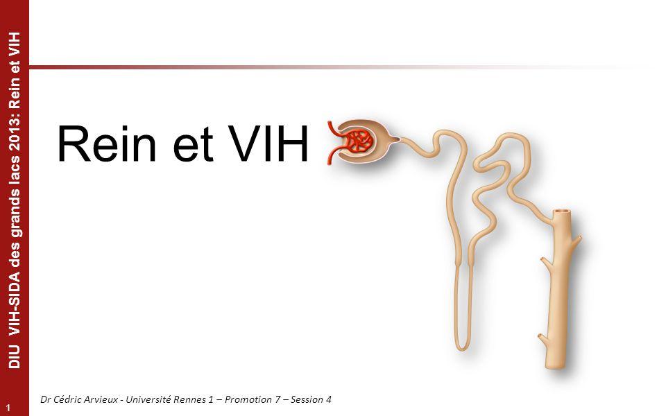 1 DIU VIH-SIDA des grands lacs 2013: Rein et VIH Dr Cédric Arvieux - Université Rennes 1 – Promotion 7 – Session 4 Rein et VIH