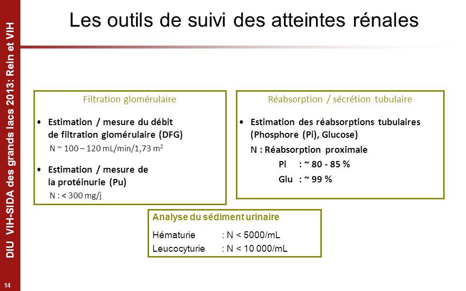 14 DIU VIH-SIDA des grands lacs 2013: Rein et VIH Les outils de suivi des atteintes rénales Filtration glomérulaire Estimation / mesure du débit de fi