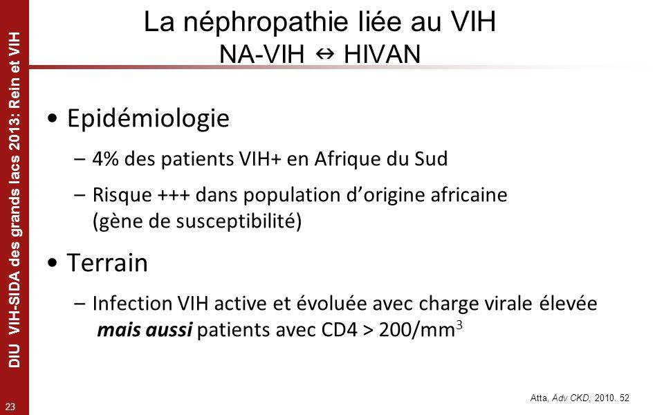 23 DIU VIH-SIDA des grands lacs 2013: Rein et VIH Epidémiologie –4% des patients VIH+ en Afrique du Sud –Risque +++ dans population dorigine africaine