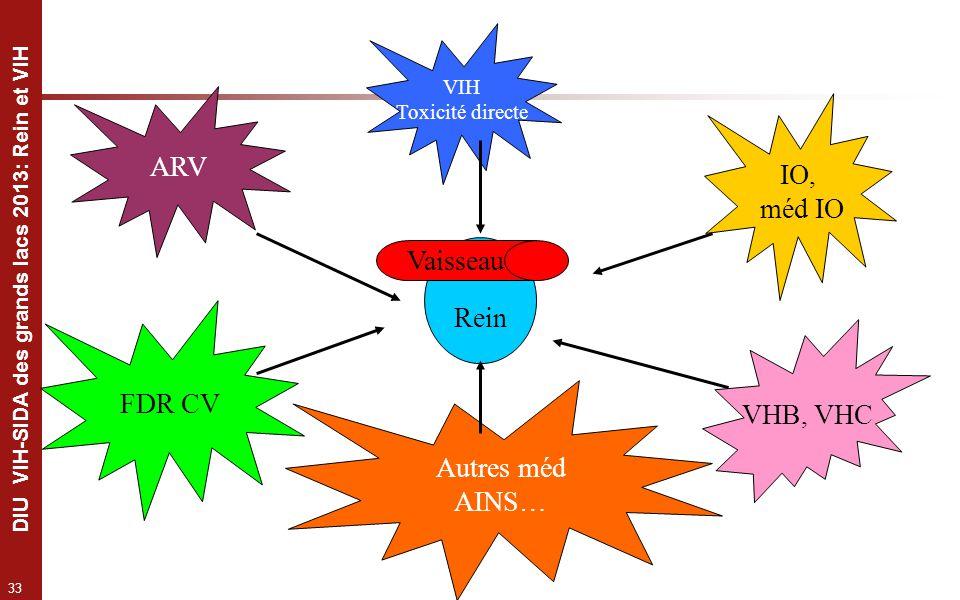 33 DIU VIH-SIDA des grands lacs 2013: Rein et VIH Rein VIH Toxicité directe VHB, VHC Vaisseau IO, méd IO FDR CV Autres méd AINS… ARV