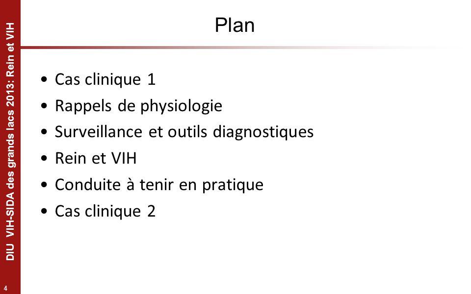 4 DIU VIH-SIDA des grands lacs 2013: Rein et VIH Plan Cas clinique 1 Rappels de physiologie Surveillance et outils diagnostiques Rein et VIH Conduite