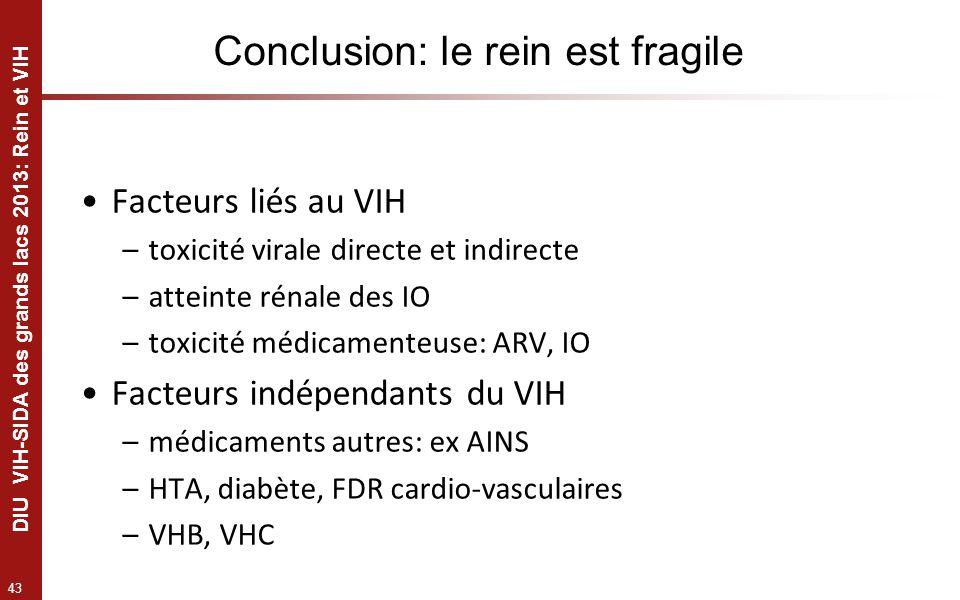 43 DIU VIH-SIDA des grands lacs 2013: Rein et VIH Conclusion: le rein est fragile Facteurs liés au VIH –toxicité virale directe et indirecte –atteinte
