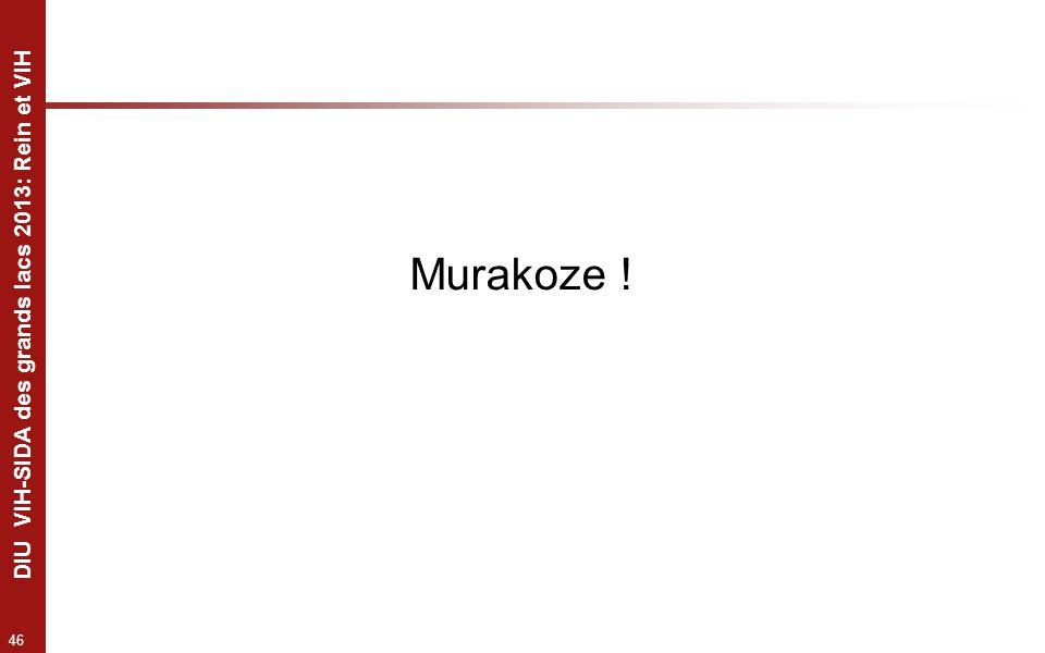 46 DIU VIH-SIDA des grands lacs 2013: Rein et VIH Murakoze !