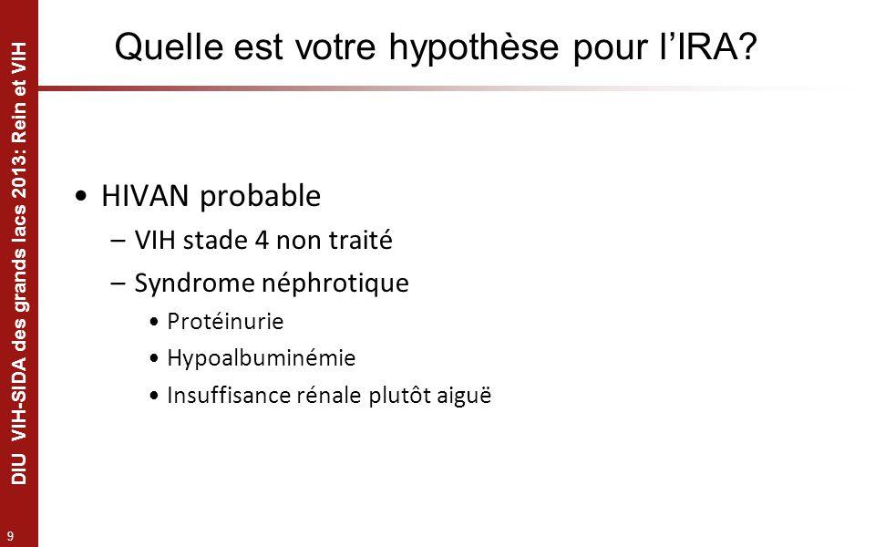 9 DIU VIH-SIDA des grands lacs 2013: Rein et VIH Quelle est votre hypothèse pour lIRA? HIVAN probable –VIH stade 4 non traité –Syndrome néphrotique Pr