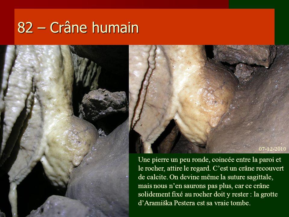 82 – Crâne humain Une pierre un peu ronde, coincée entre la paroi et le rocher, attire le regard. Cest un crâne recouvert de calcite. On devine même l