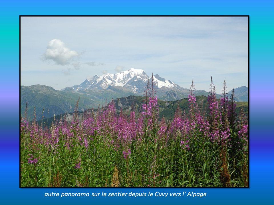 depuis le sentier du Grand Mont, proche de la table dorientation : la Pierra Menta