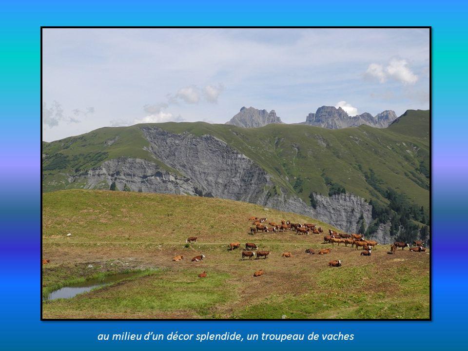 autre panorama sur le sentier depuis le Cuvy vers l Alpage