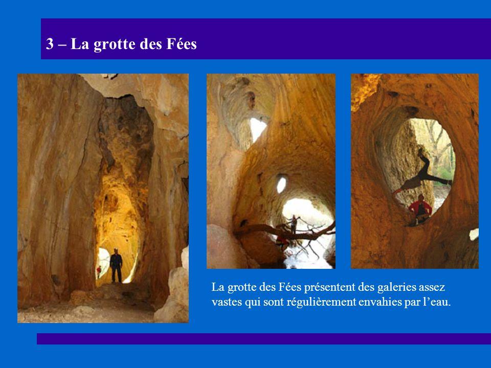 3 – La grotte des Fées La grotte des Fées présentent des galeries assez vastes qui sont régulièrement envahies par leau.