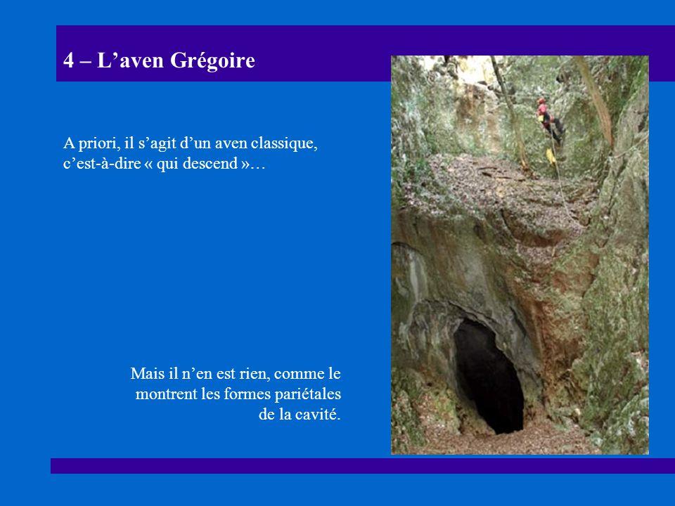 4 – Laven Grégoire A priori, il sagit dun aven classique, cest-à-dire « qui descend »… Mais il nen est rien, comme le montrent les formes pariétales d