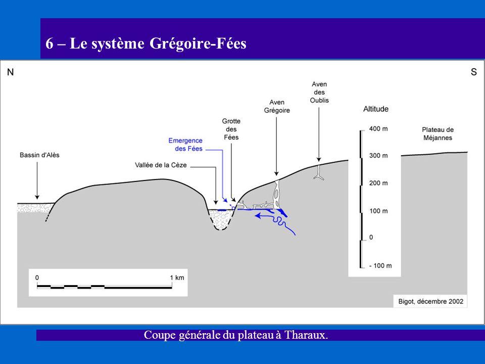6 – Le système Grégoire-Fées Coupe générale du plateau à Tharaux.