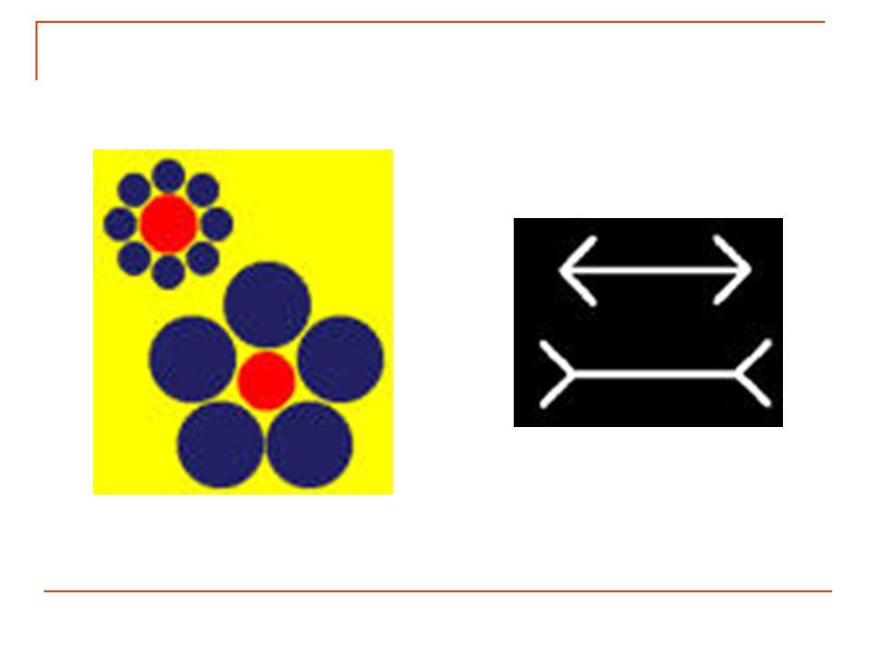 Retour au cours : Illusions d'optique et contrastesIllusions d'optique et contrastes Colorimetrie.be - Etude de la couleur - Chapitre 4 - Le 22-01-200