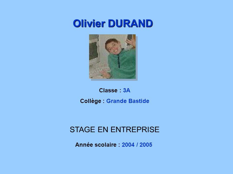 STAGE EN ENTREPRISE Classe : 3A Collège : Grande Bastide Olivier DURAND Année scolaire : 2004 / 2005