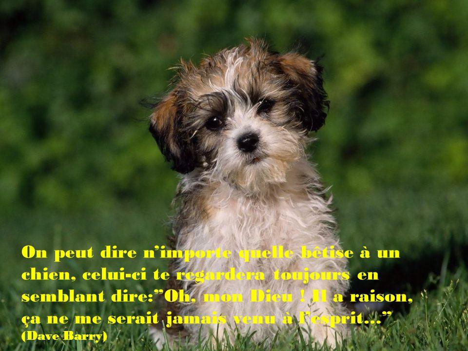 Acquérir un chien est pour certain la seule occasion de choisir un parent. (Mordecai Siega)