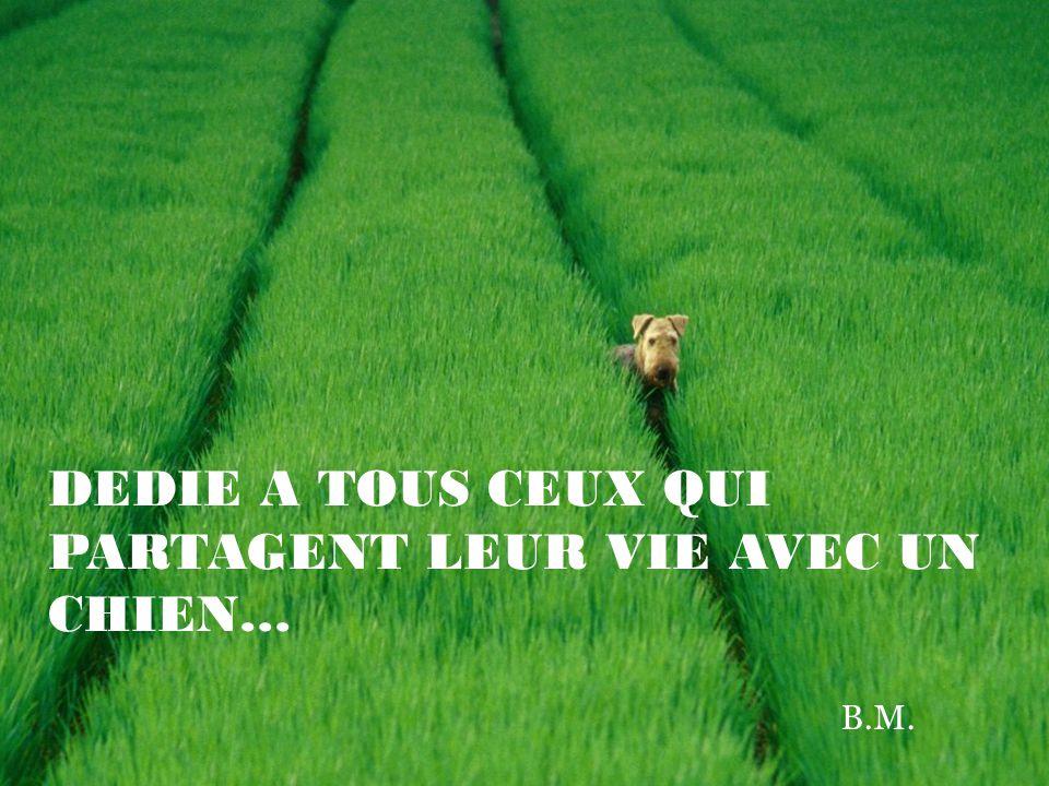…il sera notre ami pour toujours, toujours... ( Rudyard Kipling)