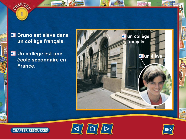 1 Bruno est élève dans un collège français. Un collège est une école secondaire en France. un collège français un élève
