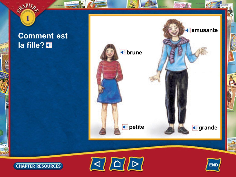 1 Féminin La fille est blonde.La fille est française.