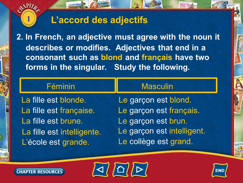 1 Féminin La fille est blonde. La fille est française. La fille est brune. Masculin Le garçon est blond. Le garçon est français. Le garçon est brun. d