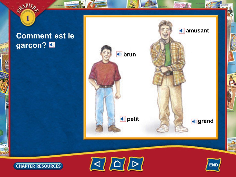 1 Answer: b.petit Answer: a. intéressante Answer: a.