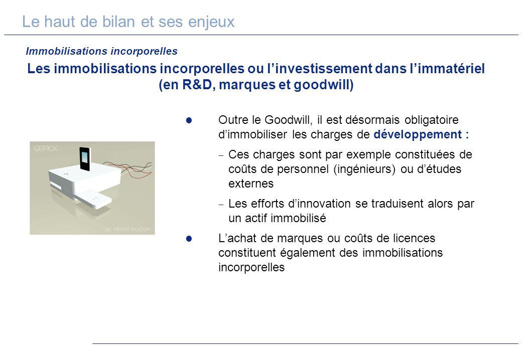 Le haut de bilan et ses enjeux Les immobilisations incorporelles ou linvestissement dans limmatériel (en R&D, marques et goodwill) Outre le Goodwill,