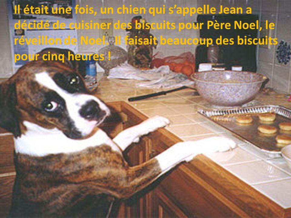 Il était une fois, un chien qui sappelle Jean a décidé de cuisiner des biscuits pour Père Noel, le réveillon de Noel.