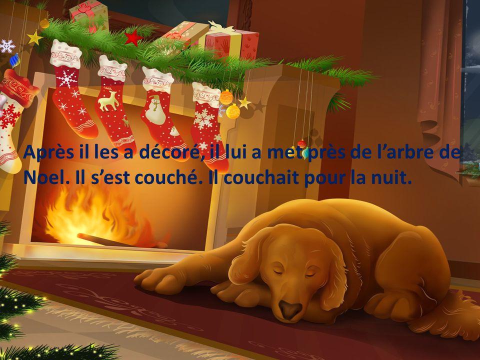 Après il les a décoré, il lui a met près de larbre de Noel.