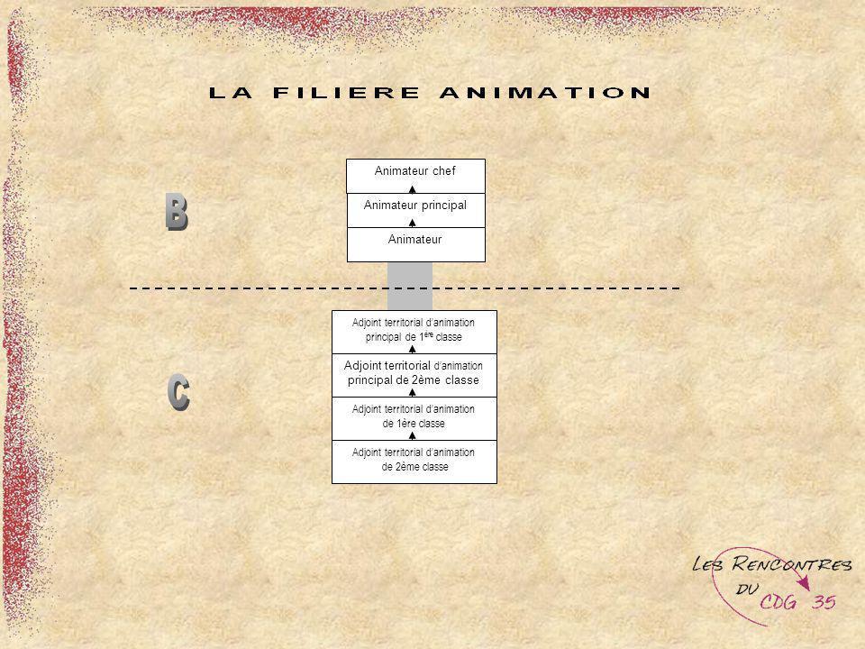 Animateur chef Animateur principal Animateur Adjoint territorial danimation principal de 1 ère classe Adjoint territorial danimation principal de 2ème