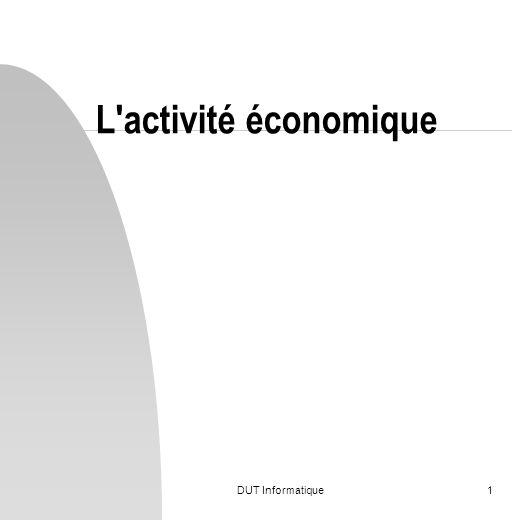 DUT Informatique1 L'activité économique