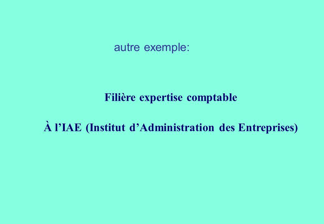 Filière expertise comptable À lIAE (Institut dAdministration des Entreprises) autre exemple: