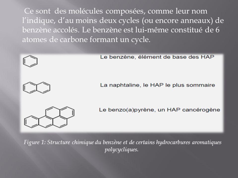Ce sont des molécules composées, comme leur nom lindique, dau moins deux cycles (ou encore anneaux) de benzène accolés. Le benzène est lui-même consti