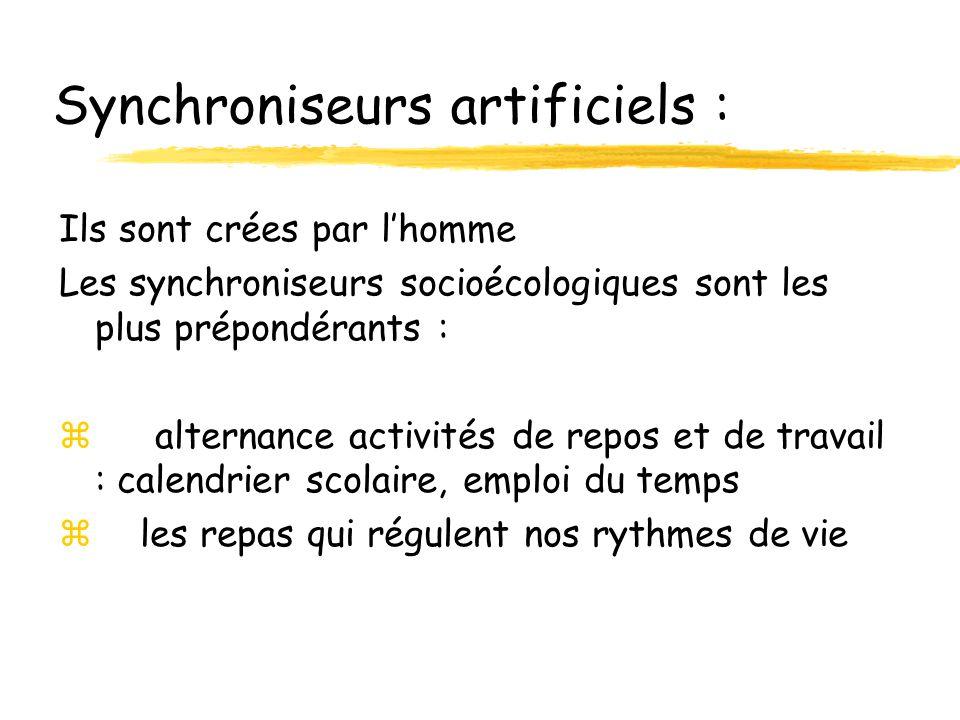 Synchroniseurs artificiels : Ils sont crées par lhomme Les synchroniseurs socioécologiques sont les plus prépondérants : zalternance activités de repo