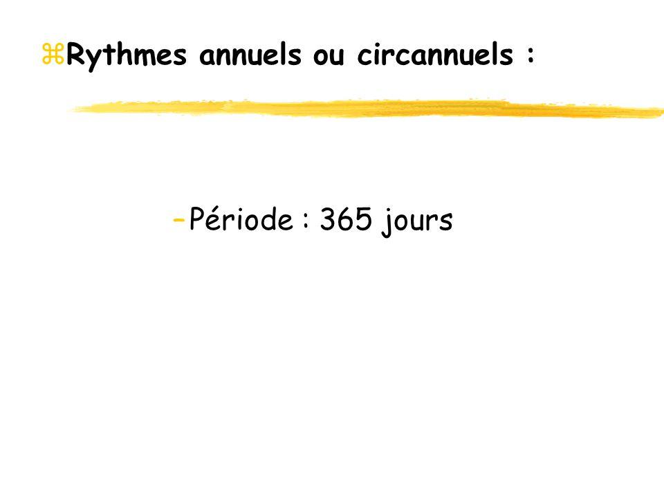 zRythmes annuels ou circannuels : –Période : 365 jours