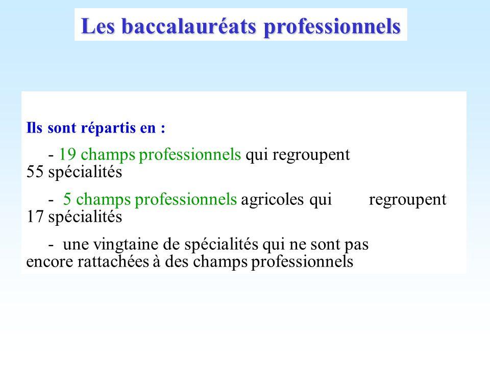 Les baccalauréats professionnels Ils sont répartis en : - 19 champs professionnels qui regroupent 55 spécialités - 5 champs professionnels agricoles q