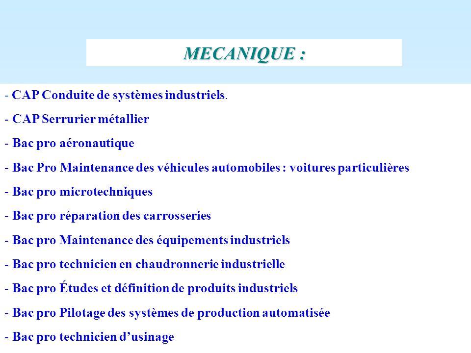 . - CAP Conduite de systèmes industriels. - CAP Serrurier métallier - Bac pro aéronautique - Bac Pro Maintenance des véhicules automobiles : voitures